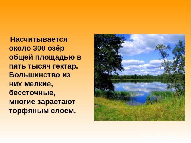 Насчитывается около 300 озёр общей площадью в пять тысяч гектар. Большинство из них мелкие, бессточные, многие зарастают торфяным слоем.
