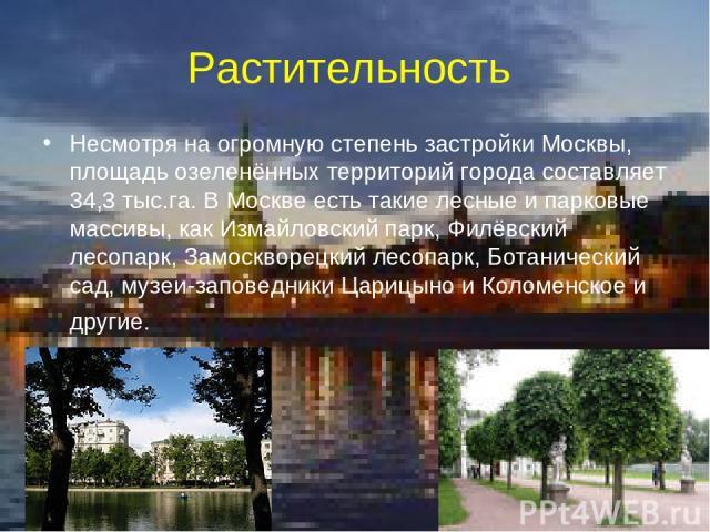 Растительность Несмотря на огромную степень застройки Москвы, площадь озеленённых территорий города составляет 34,3 тыс.га. В Москве есть такие лесные и парковые массивы, как Измайловский парк, Филёвский лесопарк, Замоскворецкий лесопарк, Ботаническ…