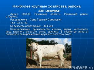 Наиболее крупные хозяйства района ЗАО «Авангард» Адрес: 390515, Рязанская област