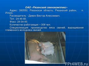 ОАО «Рязанский свинокомплекс» Адрес: 390550, Рязанская область, Рязанский район,