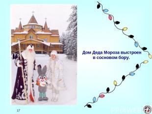 * Дом Деда Мороза выстроен в сосновом бору.