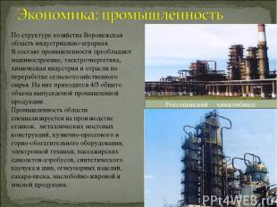 По структуре хозяйства Воронежская область индустриально-аграрная. В составе про