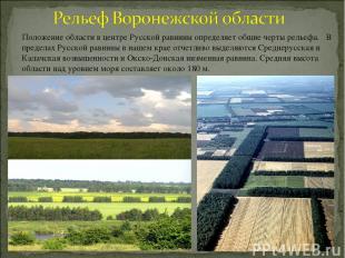 Положение области в центре Русской равнины определяет общие черты рельефа. В пре
