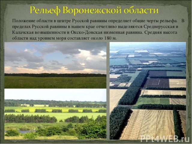 Положение области в центре Русской равнины определяет общие черты рельефа. В пределах Русской равнины в нашем крае отчетливо выделяются Среднерусская и Калачская возвышенности и Окско-Донская низменная равнина. Средняя высота области над уровнем мор…
