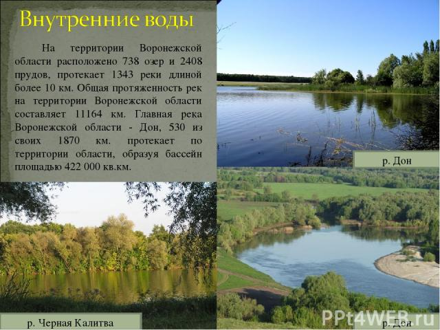 На территории Воронежской области расположено 738 озер и 2408 прудов, протекает 1343 реки длиной более 10 км. Общая протяженность рек на территории Воронежской области составляет 11164 км. Главная река Воронежской области - Дон, 530 из своих 1870 км…
