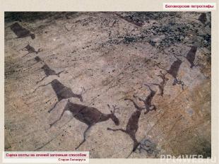 Беломорские петроглифы Сцена охоты на оленей загонным способом Старая Залавруга