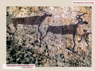 Беломорские петроглифы Сцена охоты на оленей. Фрагмент Старая Залавруга