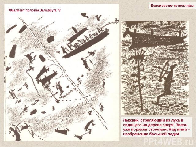 Беломорские петроглифы Лыжник, стреляющий из лука в сидящего на дереве зверя. Зверь уже поражен стрелами. Над ними – изображение большой лодки Фрагмент полотна Залавруга IV