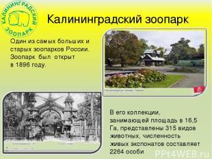 Калининградский зоопарк Один из самых больших и старых зоопарков России. Зоопарк