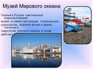 Музей Мирового океана Первый в России комплексный маринистический музей, он имее