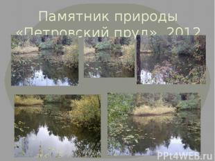 Памятник природы «Петровский пруд». 2012 г.