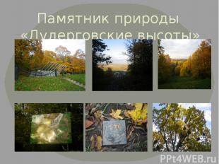 Памятник природы «Дудерговские высоты»