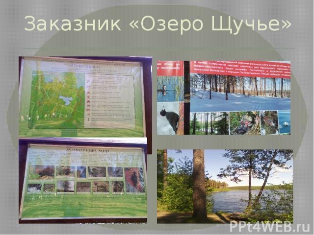 Заказник «Озеро Щучье»