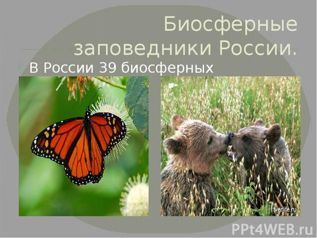 Биосферные заповедники России. В России 39 биосферных заповедников