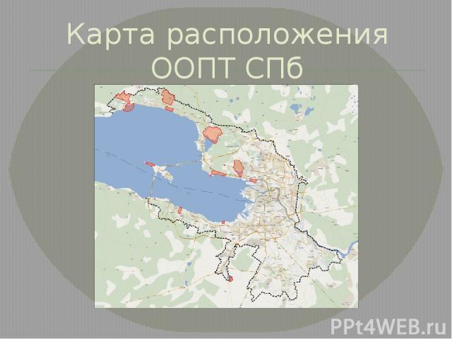 Карта расположения ООПТ СПб