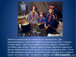 Зимой основной пищей саамов было оленье мясо. Для предохранения от цинги употреб