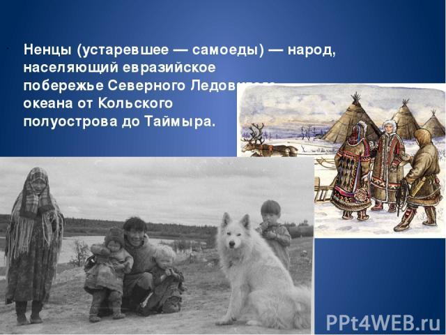 Не нцы(устаревшее—самоеды)—народ, населяющий евразийское побережьеСеверного Ледовитого океанаотКольского полуостровадоТаймыра.