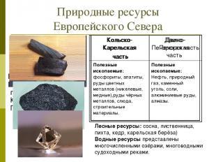 Природные ресурсы Европейского Севера Используя текст учебника(§21) и карты атла