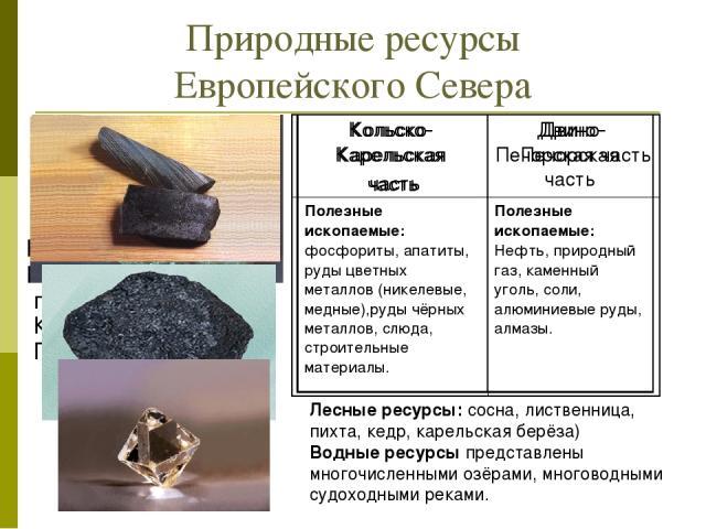 Природные ресурсы Европейского Севера Используя текст учебника(§21) и карты атласа, определите какими природными ресурсами обеспечен Европейский Север на примере Кольско-Карельской и Двино-Печорской частей. Лесные ресурсы: сосна, лиственница, пихта,…