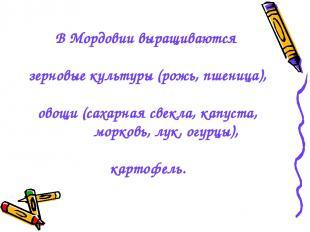 В Мордовии выращиваются зерновые культуры (рожь, пшеница), овощи (сахарная свекл
