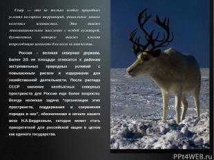 Россия – великая северная держава. Более 2/3 ее площади относится к районам экст