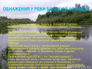 Расположены на правом берегу р. Большой Ломовис, против с. Никольского Рассказов