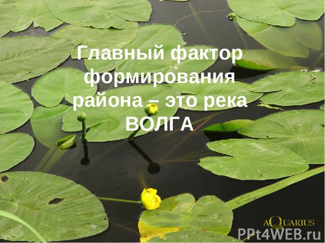 Главный фактор формирования района – это река ВОЛГА