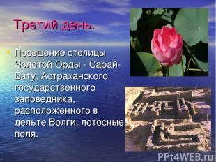 Третий день. Посещение столицы Золотой Орды - Сарай-Бату, Астраханского государс