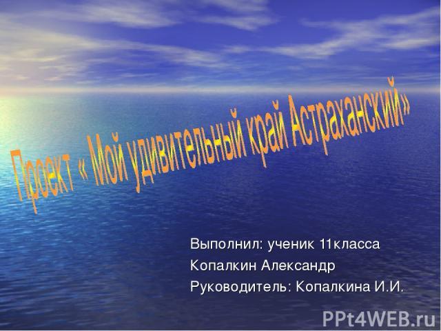 Выполнил: ученик 11класса Копалкин Александр Руководитель: Копалкина И.И.