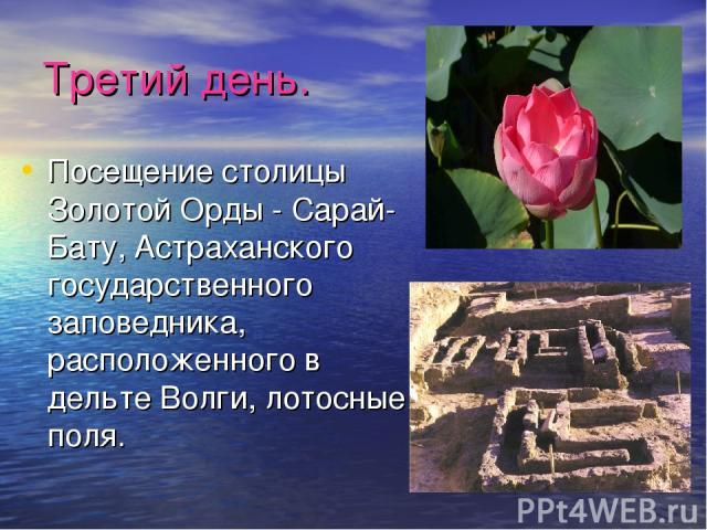 Третий день. Посещение столицы Золотой Орды - Сарай-Бату, Астраханского государственного заповедника, расположенного в дельте Волги, лотосные поля.