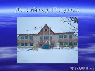 Детский сад «Петушок»