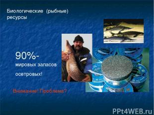 Биологические (рыбные) ресурсы 90%-мировых запасов осетровых! Внимание! Проблема