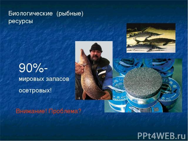 Биологические (рыбные) ресурсы 90%-мировых запасов осетровых! Внимание! Проблема?
