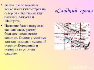 «Сладкий ерик» Балка расположена в нескольких километрах на север от с.Арзгир ме