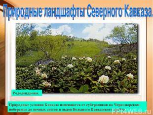Вид на Эльбрус Поляна перед перевалом Кват. Природные условия Кавказа изменяются