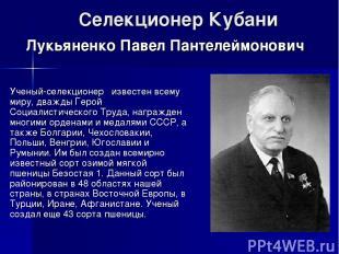Селекционер Кубани Ученый-селекционер известен всему миру, дважды Герой Социалис