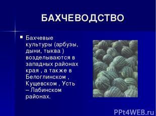 БАХЧЕВОДСТВО Бахчевые культуры (арбузы, дыни, тыква ) возделываются в западных р