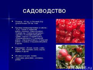 САДОВОДСТВО Площадь – 90 тыс. га. Валовый сбор урожая больше 250 тыс. тонн. Круп