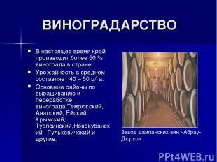 ВИНОГРАДАРСТВО В настоящее время край производит более 50 % винограда в стране.