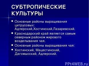 СУБТРОПИЧЕСКИЕ КУЛЬТУРЫ Основные районы выращивания цитрусовых: Адлерский,Хостин