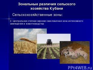 Зональные различия сельского хозяйства Кубани Сельскохозяйственные зоны: 2. Цент