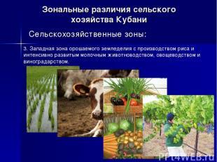 Зональные различия сельского хозяйства Кубани Сельскохозяйственные зоны: 3. Запа