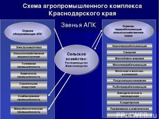 Схема агропромышленного комплекса Краснодарского края Звенья АПК Сельское хозяйс