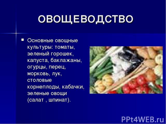 ОВОЩЕВОДСТВО Основные овощные культуры: томаты, зеленый горошек, капуста, баклажаны, огурцы, перец, морковь, лук, столовые корнеплоды, кабачки, зеленые овощи (салат , шпинат).
