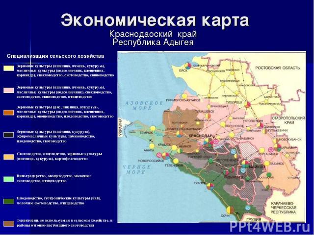 Экономическая карта Краснодаоский край Республика Адыгея Специализация сельского хозяйства