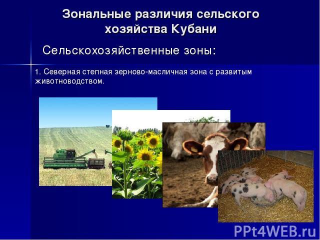 Зональные различия сельского хозяйства Кубани Сельскохозяйственные зоны: 1. Северная степная зерново-масличная зона с развитым животноводством.