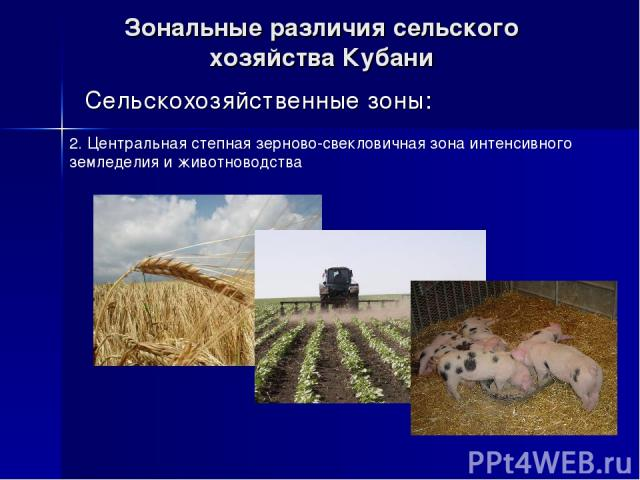 Зональные различия сельского хозяйства Кубани Сельскохозяйственные зоны: 2. Центральная степная зерново-свекловичная зона интенсивного земледелия и животноводства