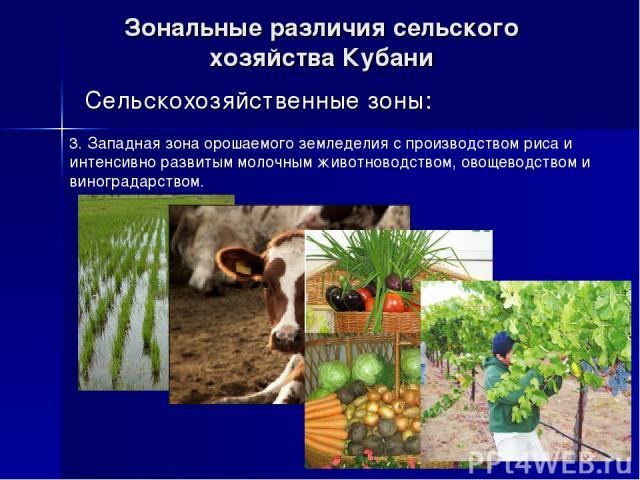Зональные различия сельского хозяйства Кубани Сельскохозяйственные зоны: 3. Западная зона орошаемого земледелия с производством риса и интенсивно развитым молочным животноводством, овощеводством и виноградарством.