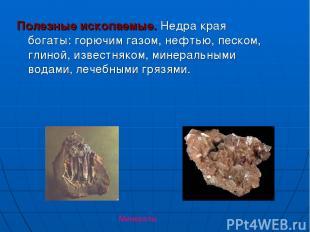 Полезные ископаемые. Недра края богаты: горючим газом, нефтью, песком, глиной, и