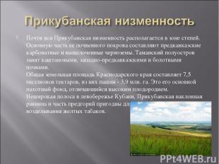 Почти вся Прикубанская низменность располагается в зоне степей. Основную часть е